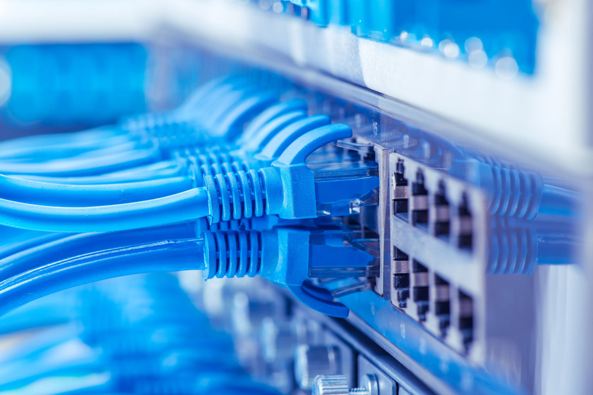 Close Up of Blue Network Cables
